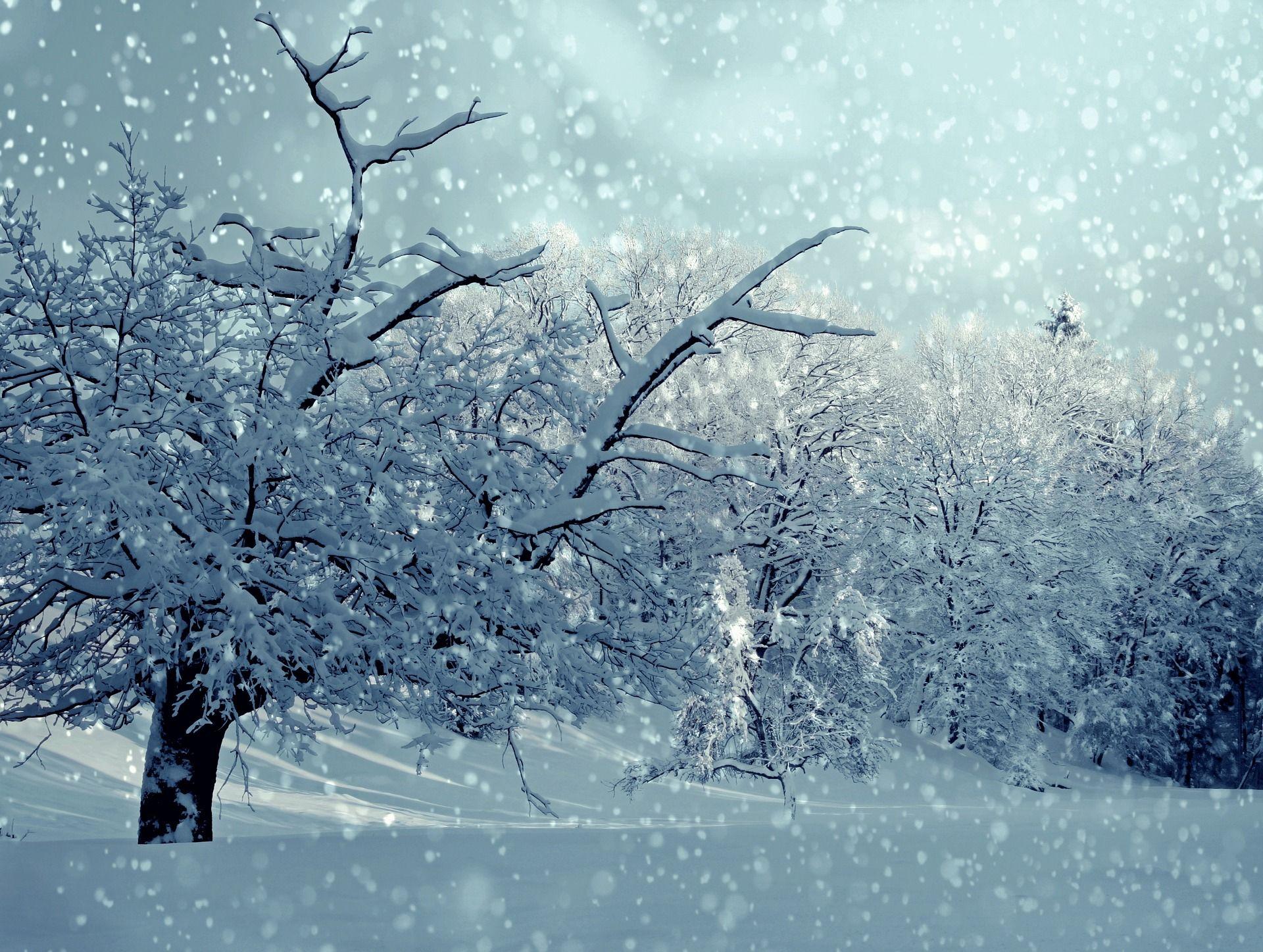 зима віршики для дітей