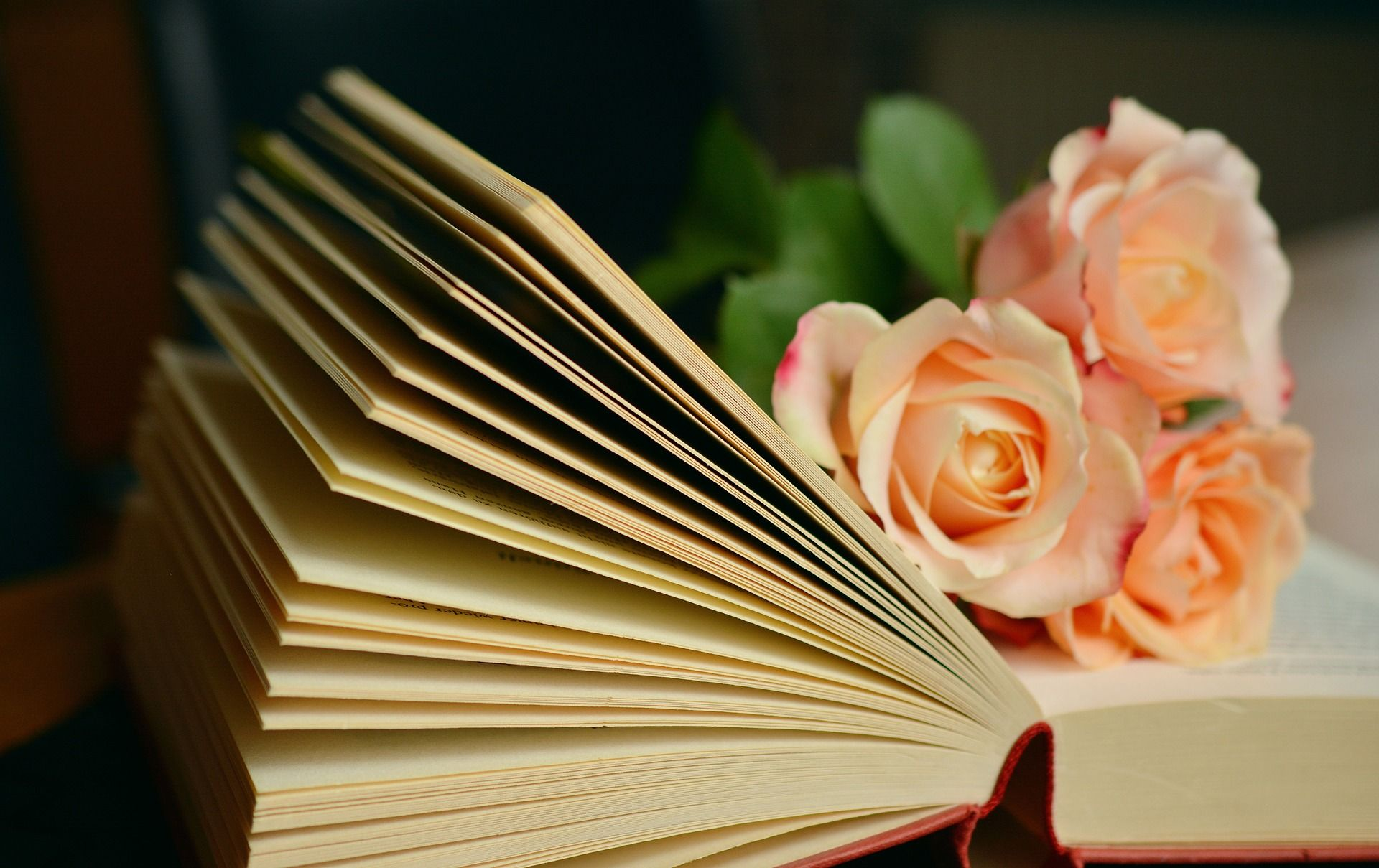 Feel the Classics: 10 Romantic Sonnets by William Shakespeare.