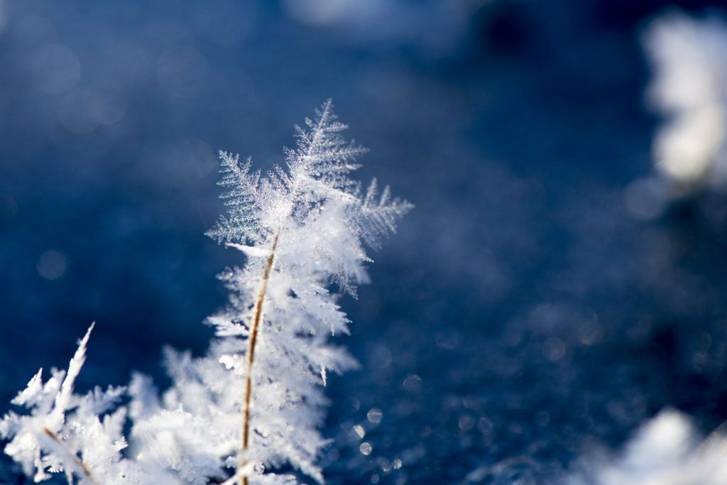 Зимняя сказка: вьюжные и морозные стихи о зиме.