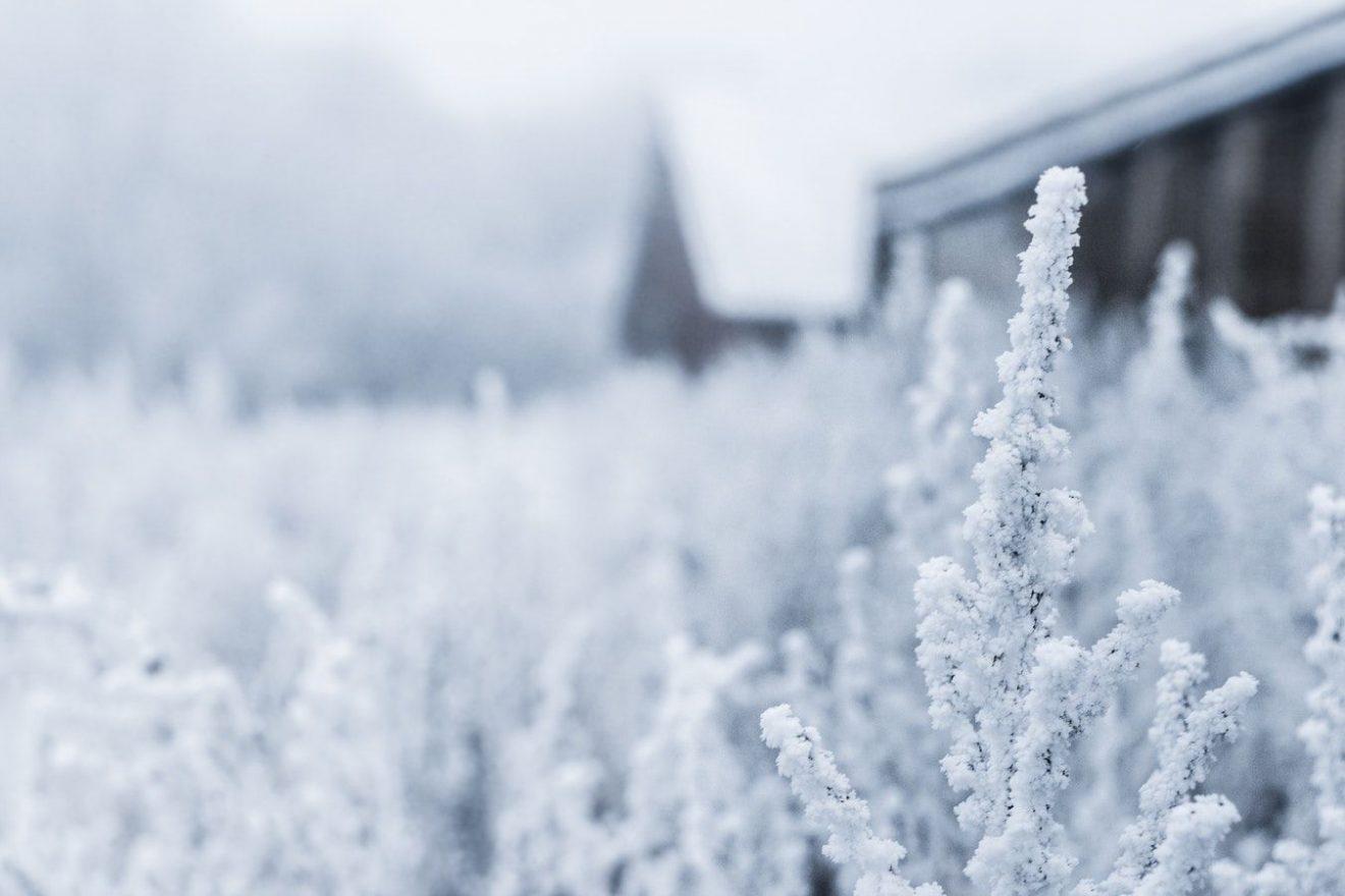 зимові вірші українська поезія